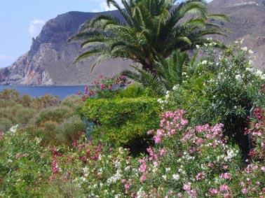 Ligurien, Meer:Ferienhäuser, Villen, Ferienwohnungen